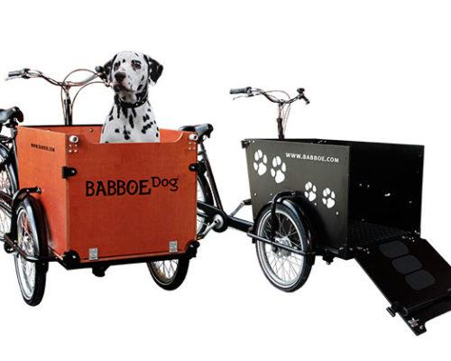 babboe-dog-lastenrad