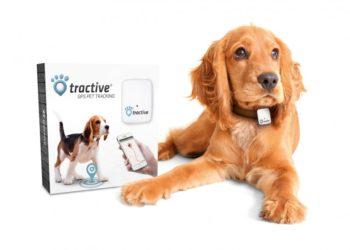 tractive-gps-hund
